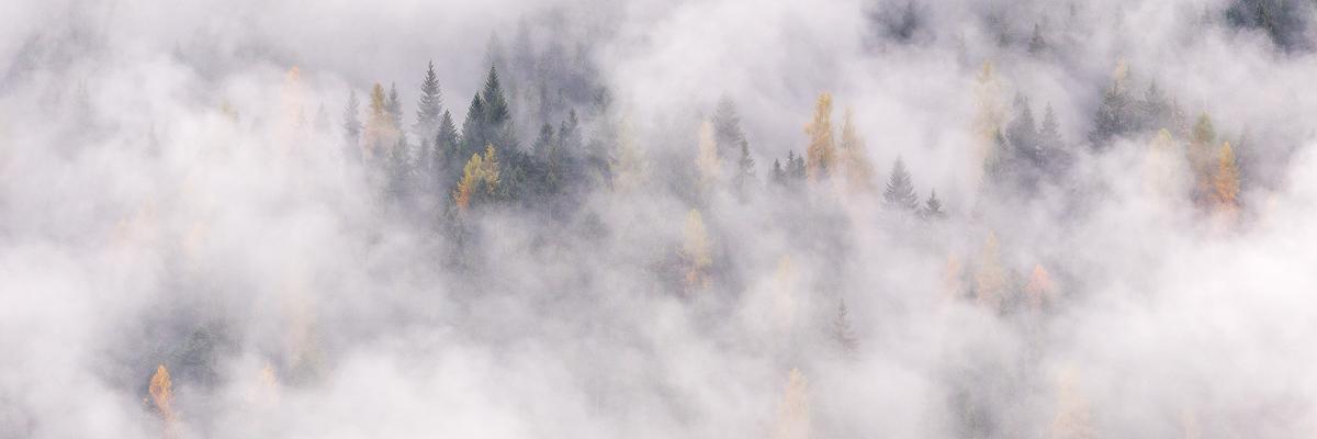 autunno_nebbie_biois