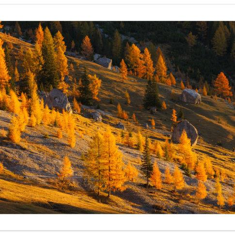 valle_ombretta_autunno