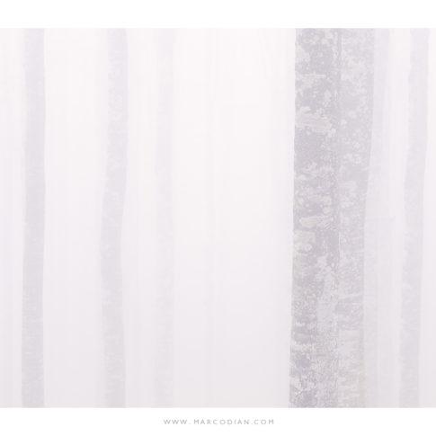 cansiglio_nebbia_autunno