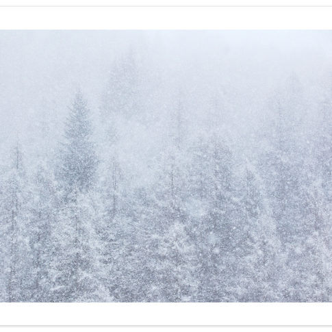 nevicata_zoldo_alto
